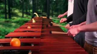 Hyrule Field Theme tocado en Marimba